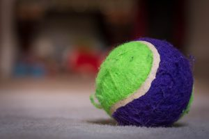 colourful tennis ball